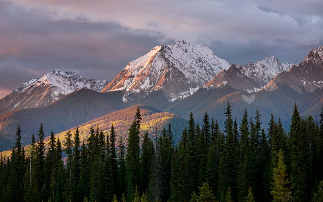 Tripps Travel Network Reviews Rocky Mountains in Colorado