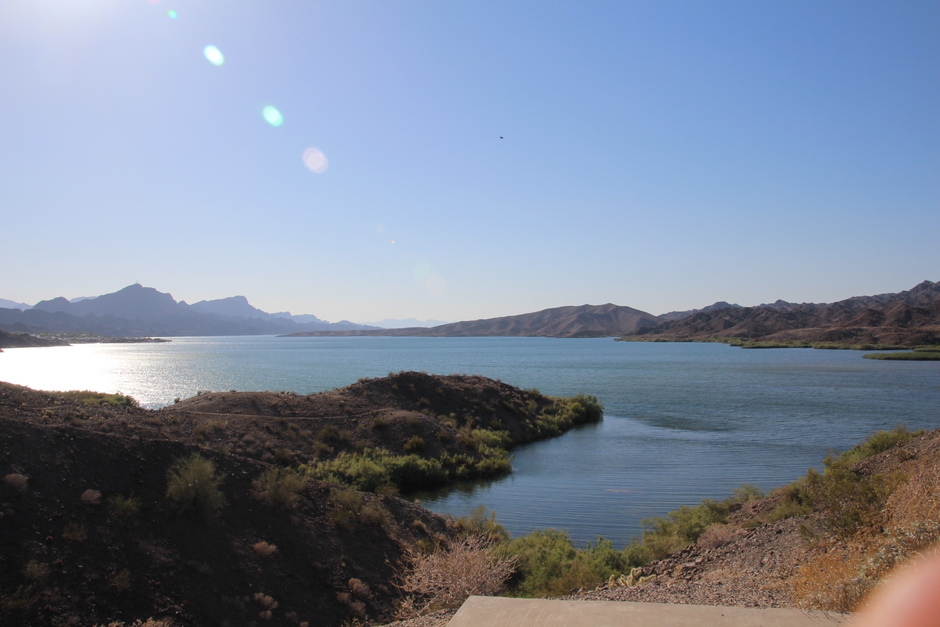 Tripps Travel Network Reviews Lake Havasu AZ (1)